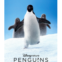 The Penguin March (BB) from Penguins Disneynature