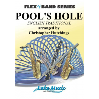 Pool's Hole (FLEX BAND)