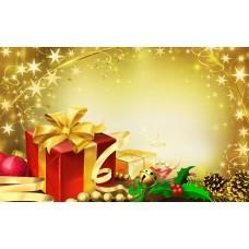 Festive Christmas (FA)
